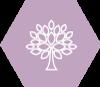 oazukari_logo.png